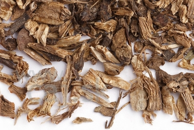 Bíbor echinacea (gyökér)/ 40g
